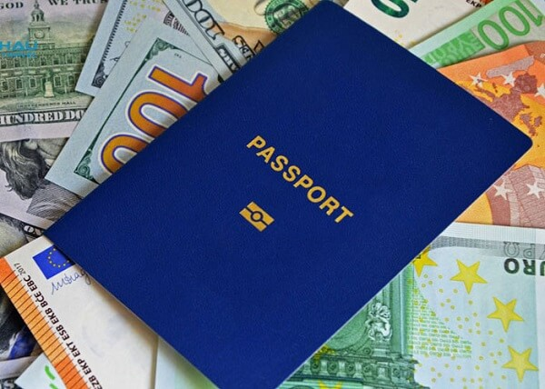 các loại visa cho người nước ngoài tại việt nam hình 3